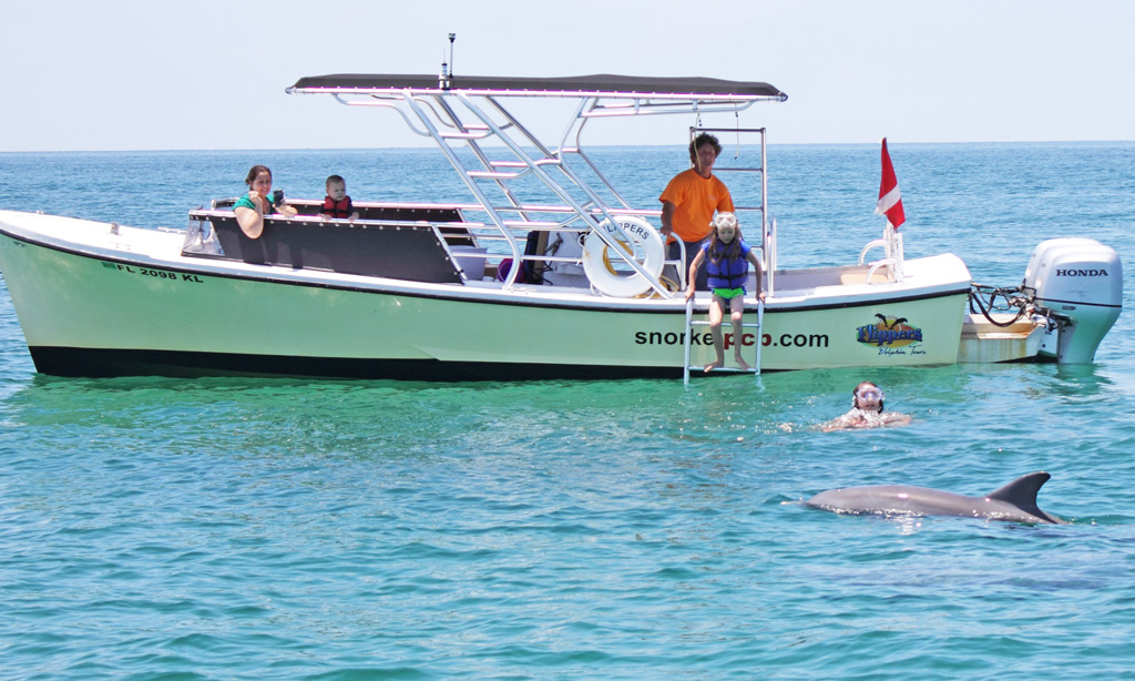 dolphin-boat-tour-main