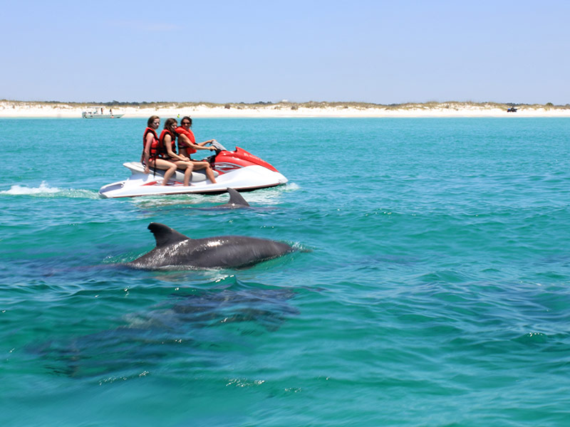 Flippers Tours Als Inc Panama City Beach Jet Ski